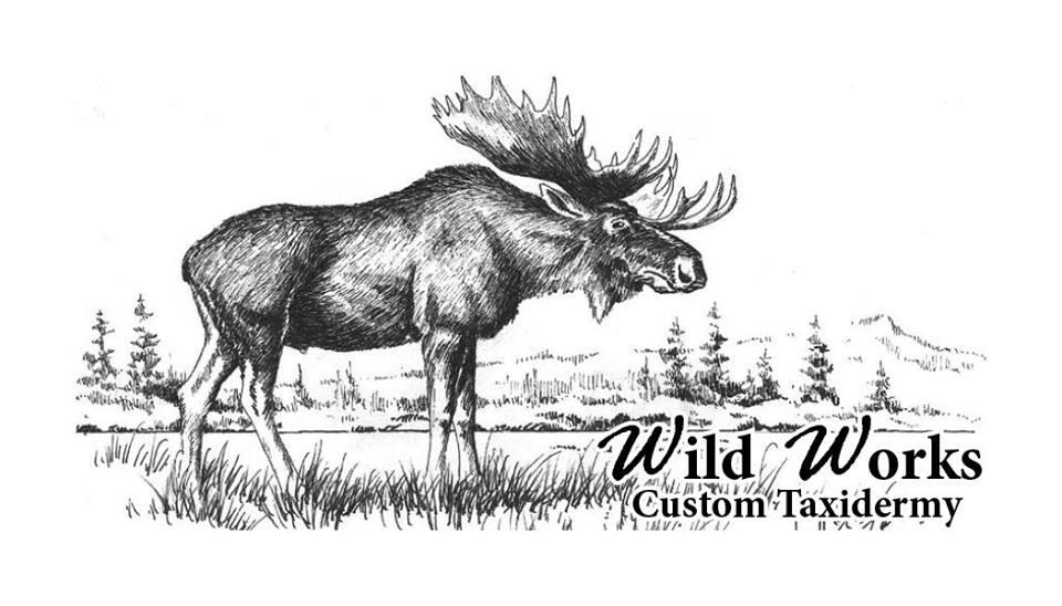 wild works